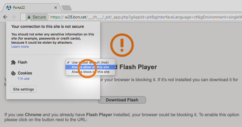 Download Flash Player ||:::  __